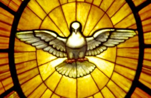 Dove of the Holy Spirit Gian Lorenzo Bernini